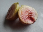 A Fig Picked and Shared
