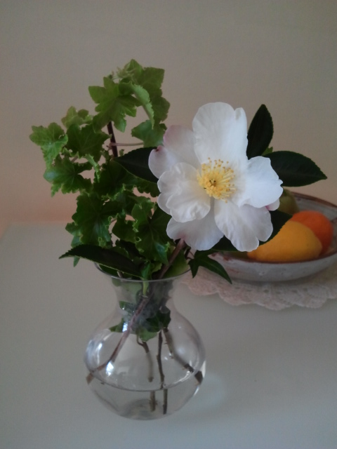 A single Camellia and some Ivy straight from the garden