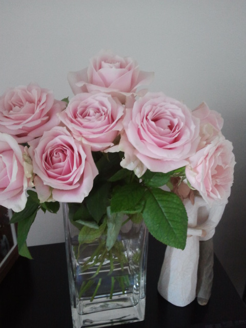 My bunch of pink roses fresh from the Sydney Flower Market