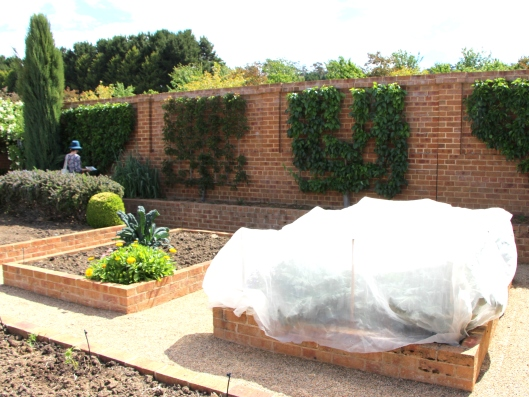 Inside The Walled Potager, The Garden Beds
