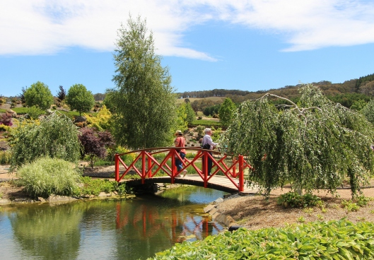 The Red Bridge In The Water Garden