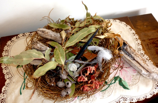 Nest and Drift Wood