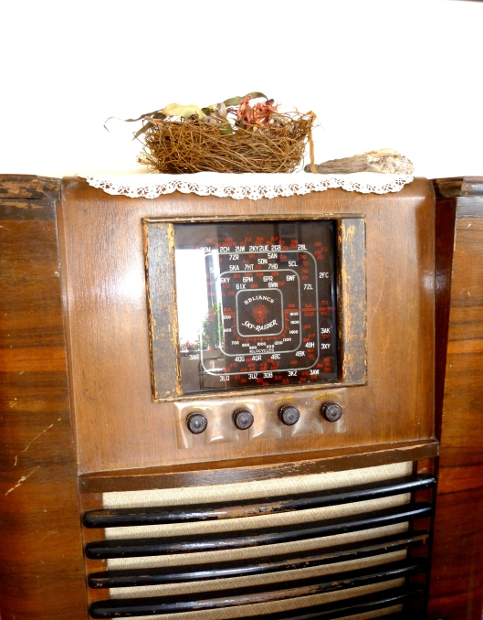 Nest On The Old Radio
